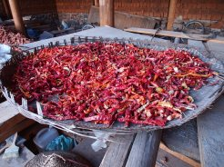 Dried chillis, home grown and occasionally...