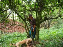 Naima and puppy in a 300yo tea tree.