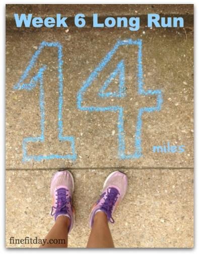 Week 6 Long Run