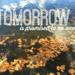 Tomorrow is Promised to No One. On loss, on living for today, on cultivating a sense of gratitude for the gifts we have.