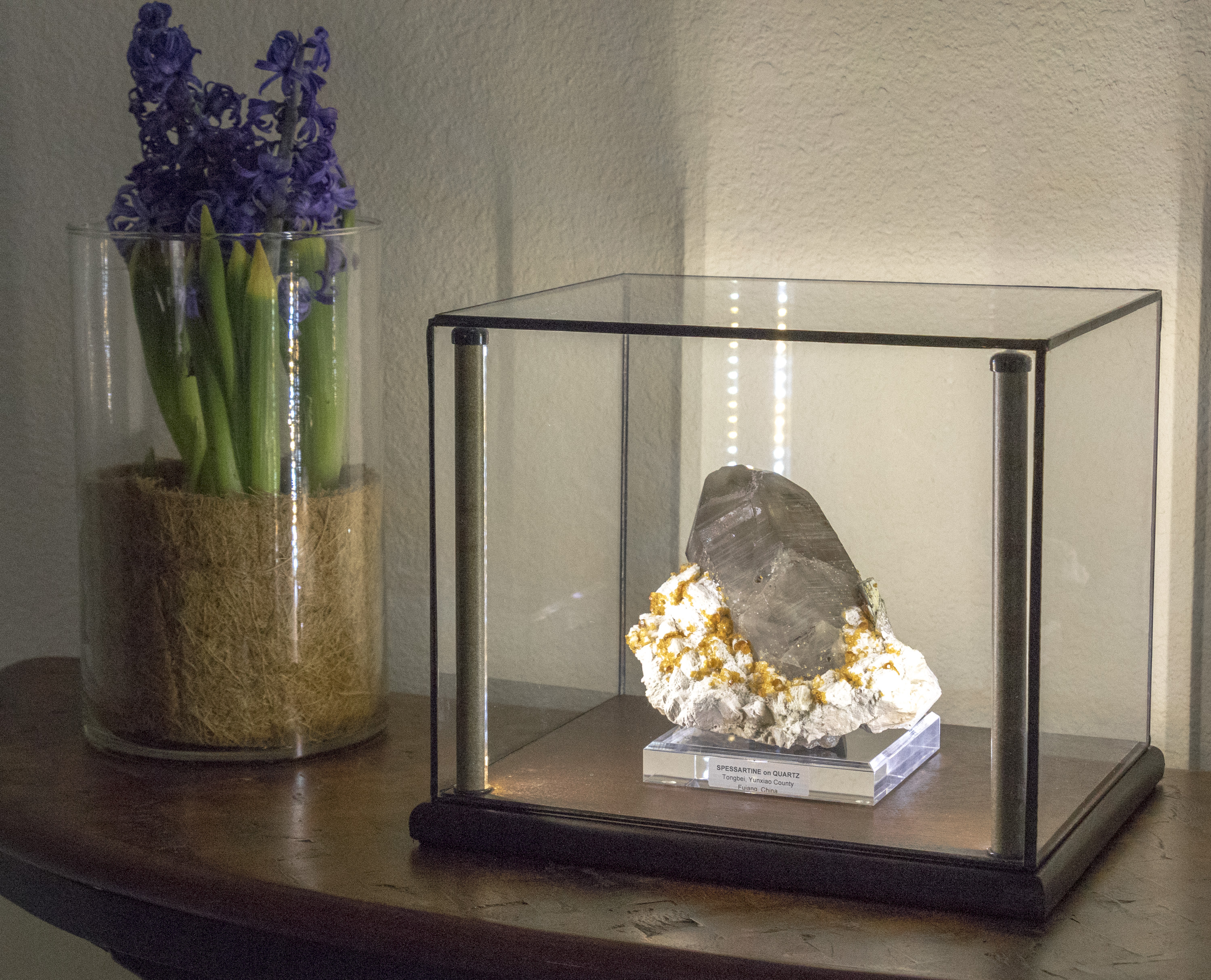 Small Lights Display Case