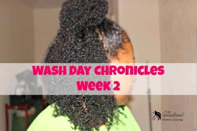 wash day chronicles
