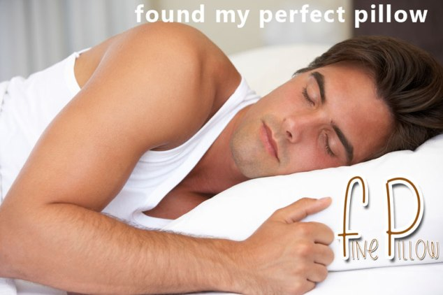 found-my-perfect-pillow-guy