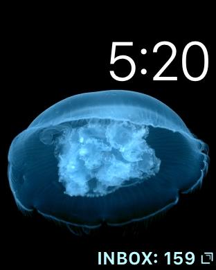 img_1007