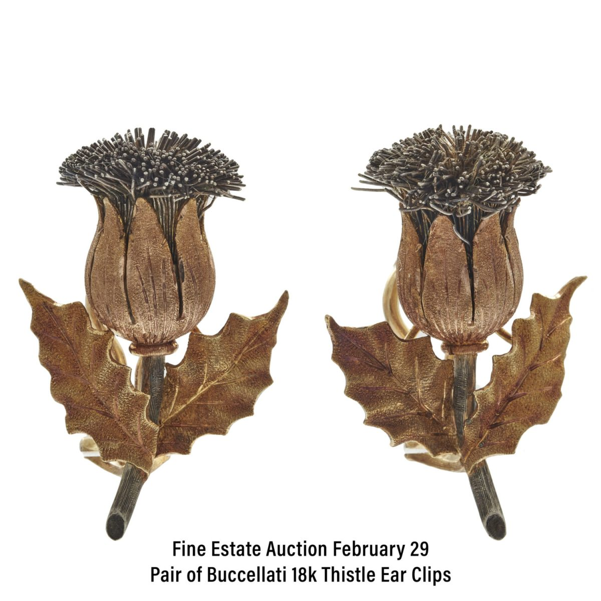 Pair of Buccellati 18k Thistle Ear Clips