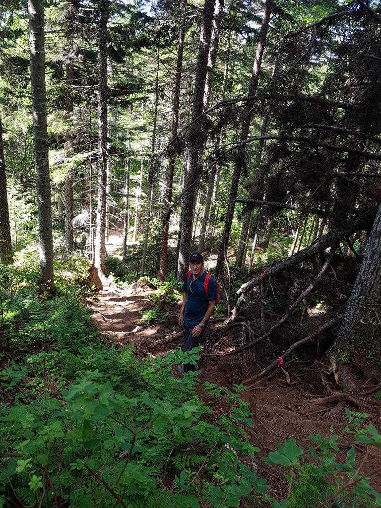 Mount meakan trail
