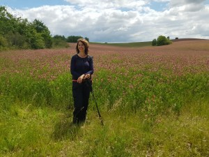 pink fields with me