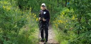 doron on path