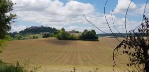 Lauzerte fields and sky