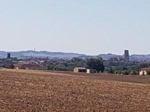 fields near Lectoure