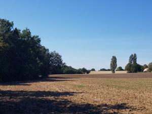 landscape near Lectoure