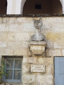 cat in La Romieu
