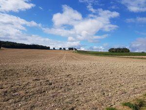 fields3