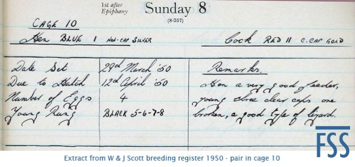 JScott breeding register 1950 pair-fss