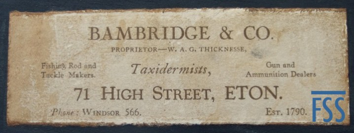 Bambridge & Co-fss
