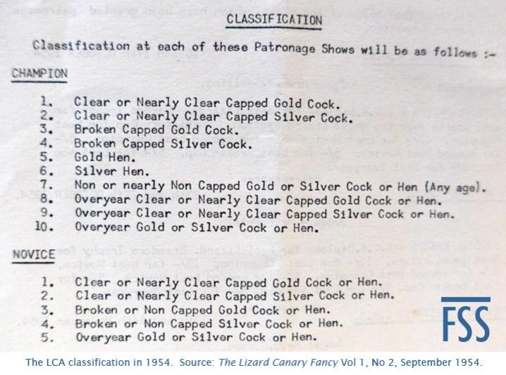 Lizard classification 1954-FSS