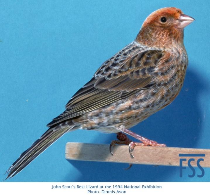 john-scott-ccsc-1994-fss