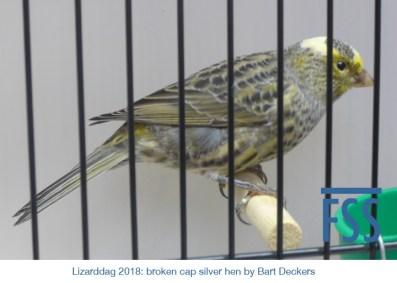 Lizarddag 2018 BCSH BDeckers-FSS