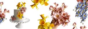 Sugar Flower Collage