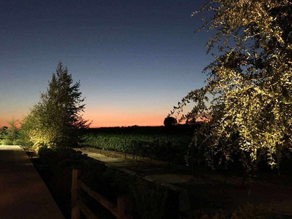 Sunset at Oak Farm Vineyards | Photo by Kristy DeVaney @cavegrrl