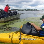 Volunteers pulling water chestnut from Braddock Bay. Photo credit: Hilary Mosher