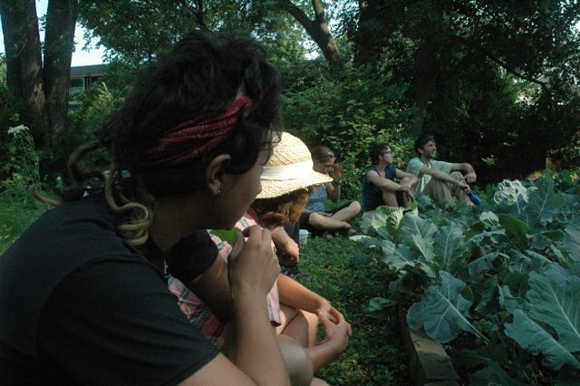 FLPCI Seeks Summer Permaculture Apprenticeship Applicants