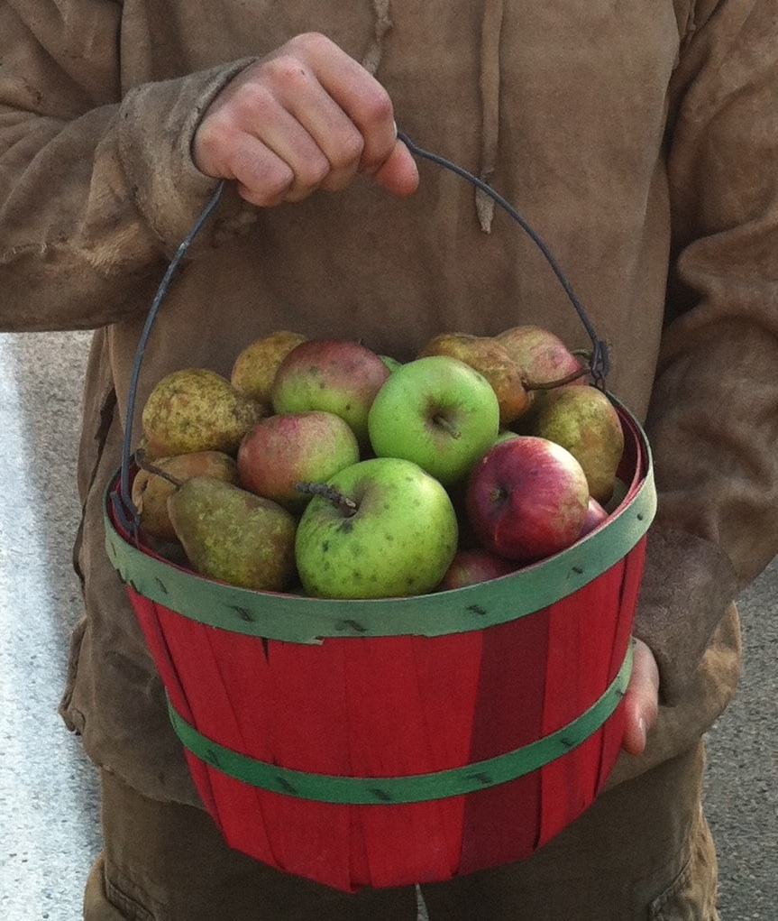 FLPCI Alum builds his farm with apples & permaculture