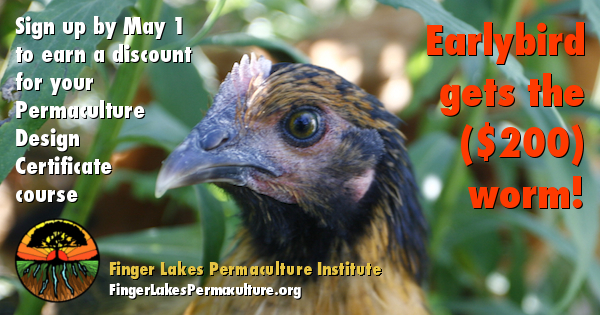 May 1 approaches: summer permaculture course discount