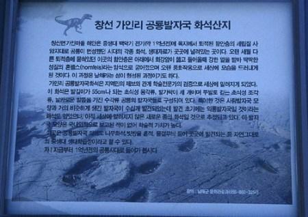 남해안 가인리 공룡 발자국 화석산지 표지판 - 사람 발자국