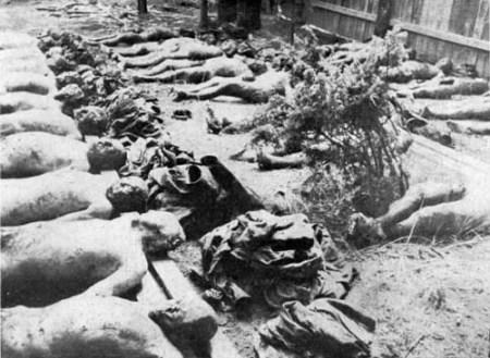 러시아 공산혁명 당시 학살된 사람들