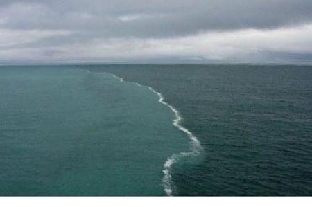 섞이지 않는 바닷물