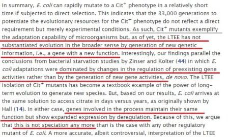 리처드 렌스키의 대장균에는 유전 정보 증가가 없다
