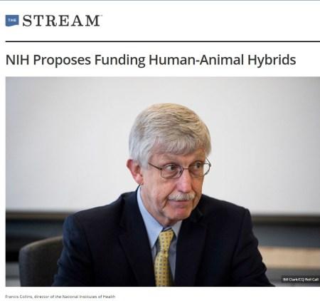 프랜시스 콜린스 - 동물과 인간의 교잡 연구 펀딩