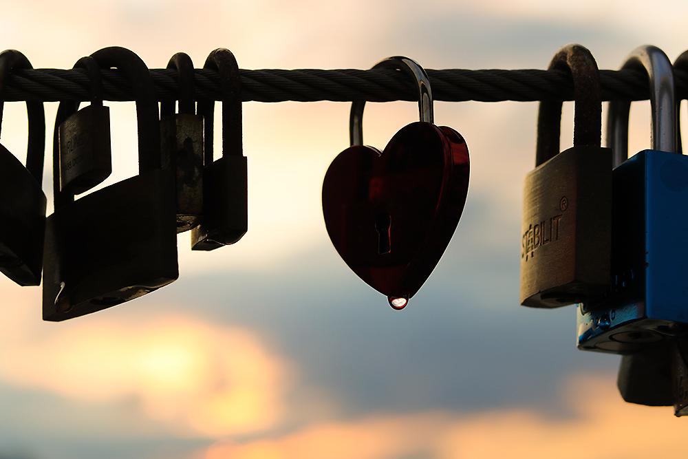 FINK Positive: Fotos die von Herzen kommen - Momente, die bleiben.
