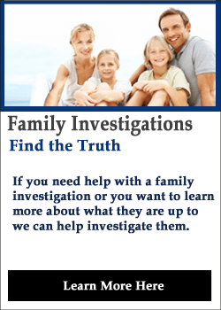 Domestic Investigations