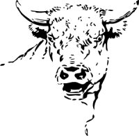 Bull_Head_clip_art_medium