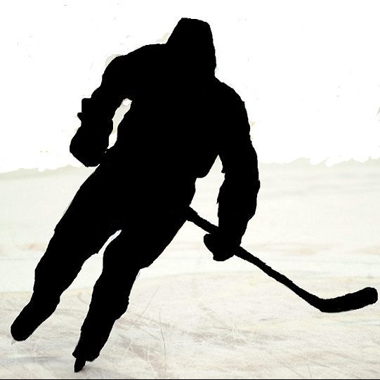 cropped-cropped-sidney-crosby1