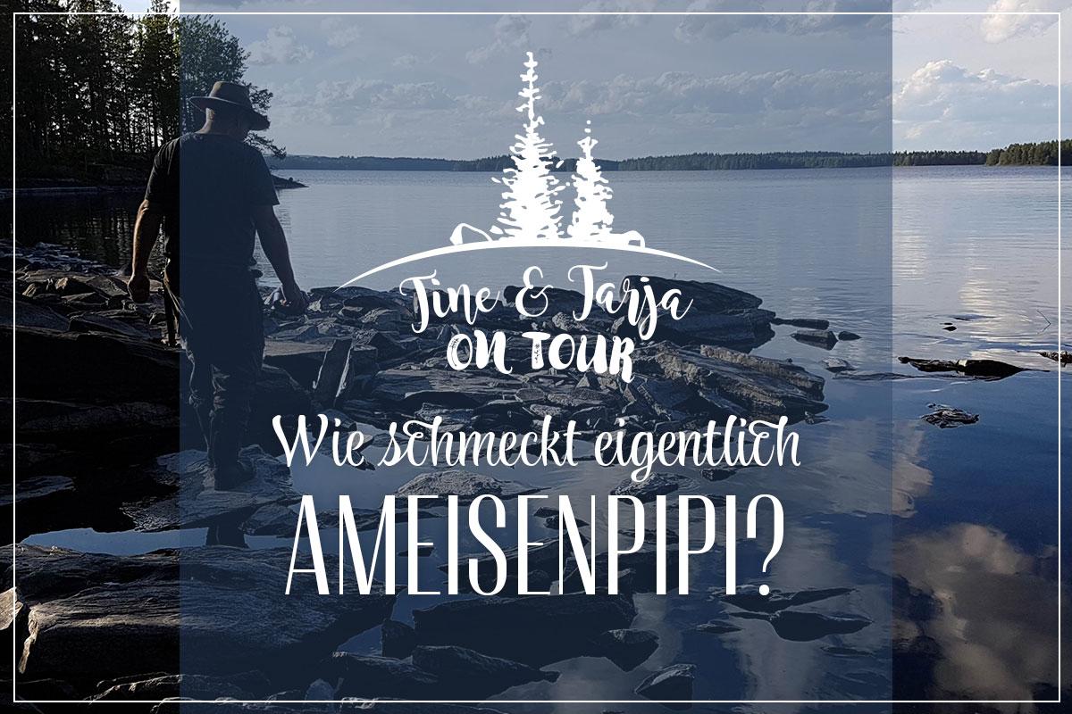 Tine & Tarja on Tour: Wie schmeckt eigentlich Ameisenpipi? » Finnweh! Ein Finnland-Blog