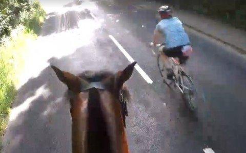 1000 euros de multa para un ciclista por adelantamiento temerario a un caballo