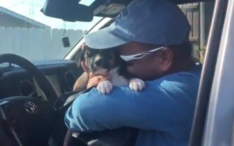 Su padre entró en depresión después de perder a su perrete, así que le sorprendieron con un nuevo cachorro