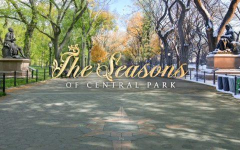 Central Park | Juntando todas las estaciones en un solo timelapse en 8K