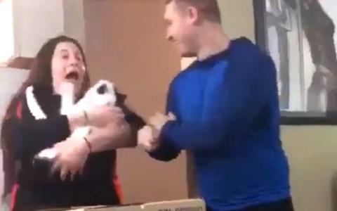 El gato ha perdido 3 vidas de golpe