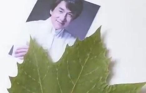 Dibujando a Jackie Chan sobre una hoja de árbol
