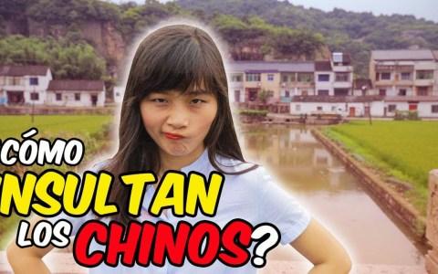 Los INSULTOS en CHINA: un enfoque sociocultural