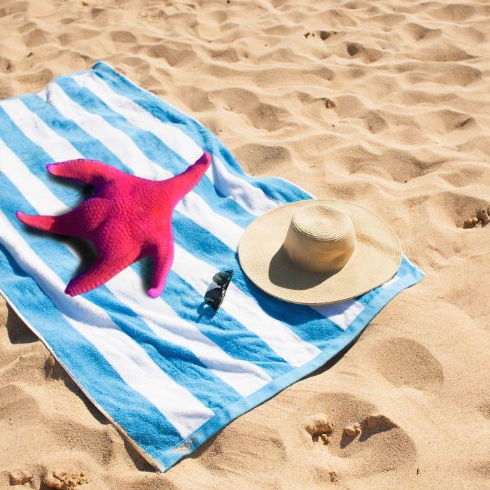 Alguien encontró una estrella de mar en un acuario que pedía chops, e Internet hizo lo suyo