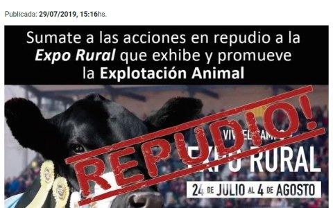 Ser vegano en argentina tiene DOBLE riesgo