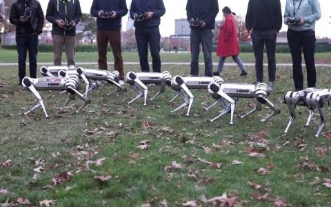Probando 9 minicheetahs del MIT al mismo tiempo