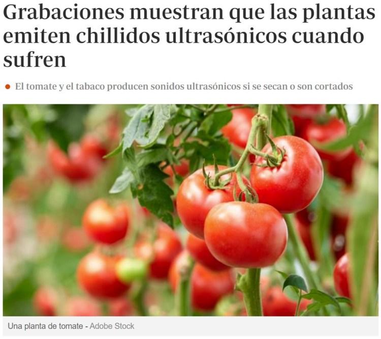 """Duro golpe para los veganos y demás """"amantes de las plantas"""""""