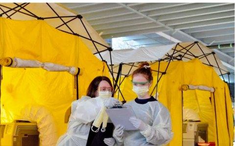 Un tratamiento completo por Coronavirus puede llegar a costar hasta 35.000 dólares en EEUU, con un coste medio de 21.000.