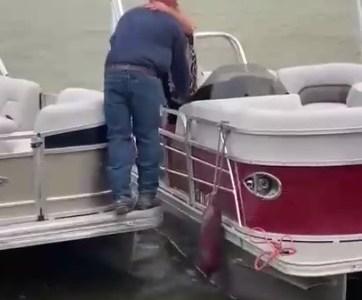 Le pide matrimonio a su novia entre dos barcos (sale mal)